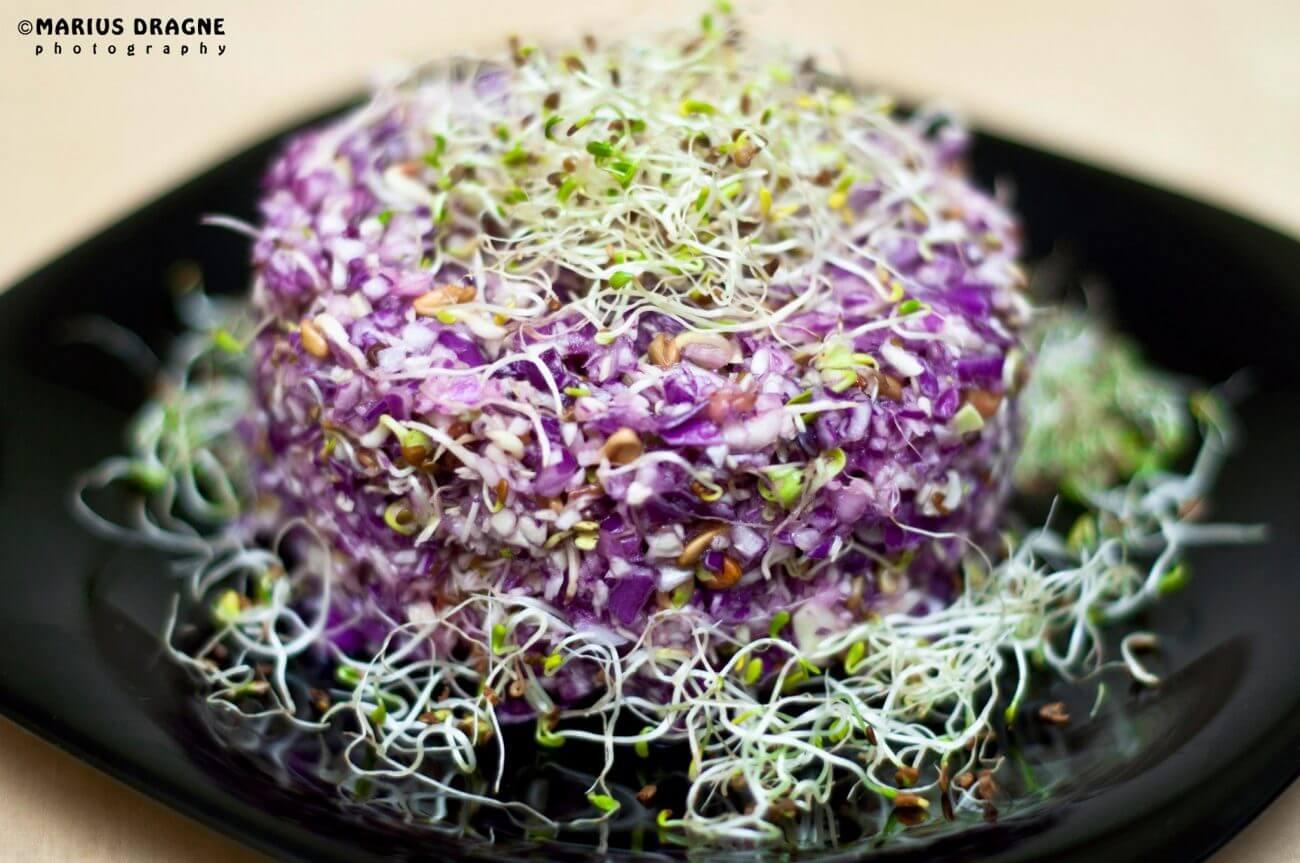 Salata de varza rosie si germeni